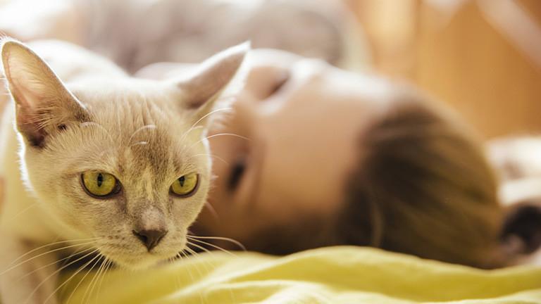 Frau mit Katze.