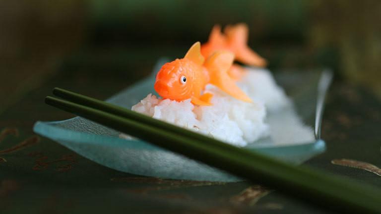 Fisch Sushi