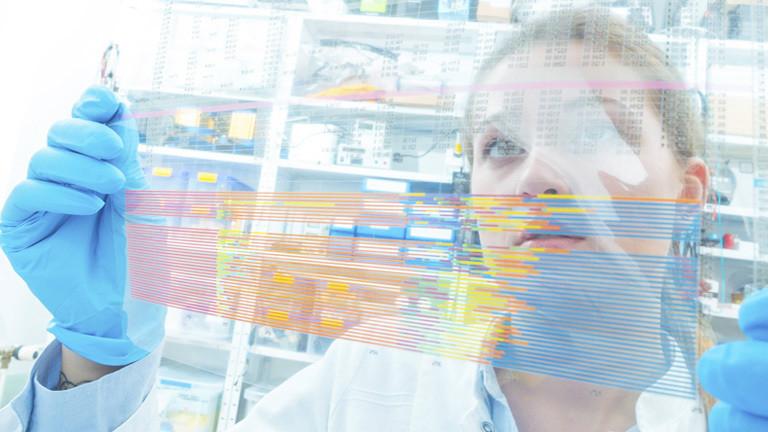 Untersuchung genetischer Daten auf einem durchsichtigen Dokument.