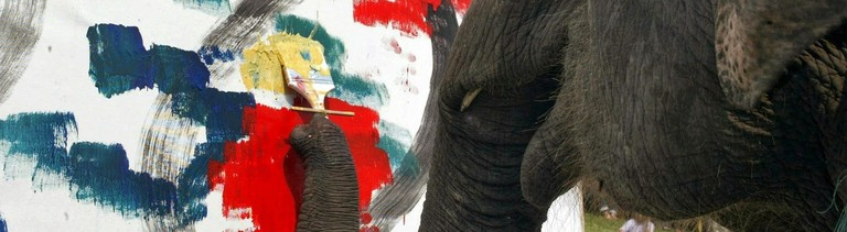 Ein Elefant in Thailand malt ein Bild. Damit wird das Resozialisierungscamp unter anderem refinanziert.