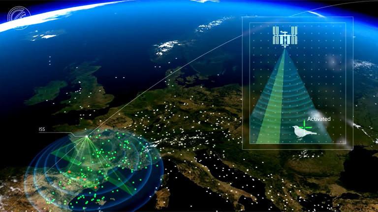 Eine Grafik, die beschreibt wie bei dem Icarus-Projekt des Max-Planck-Instituts Daten gesammelt werden.