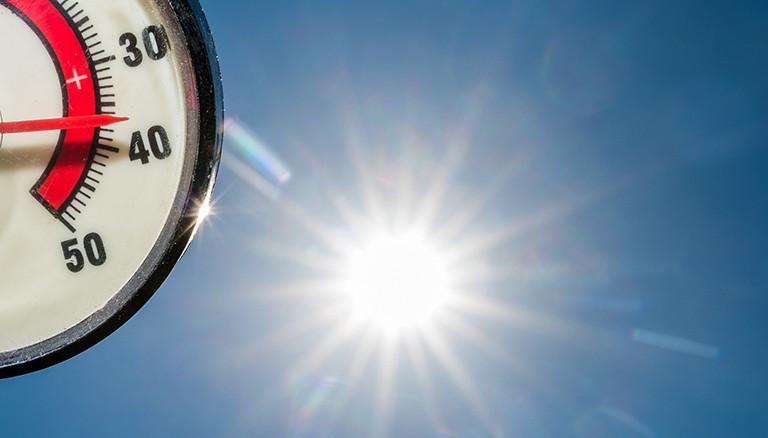 Im Gegenlicht der Nachmittagssonne zeigt am 04.07.2015 ein Thermometer 37 Grad Celsius in einem Garten in Sieversdorf (Brandenburg) an. Foto: Patrick Pleul/dpa
