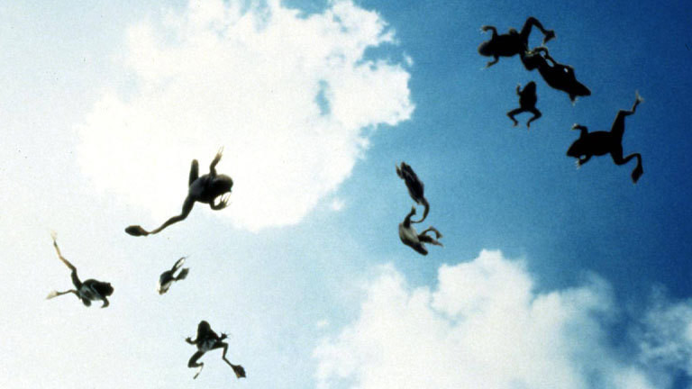 Frösche fallen vom Himmel