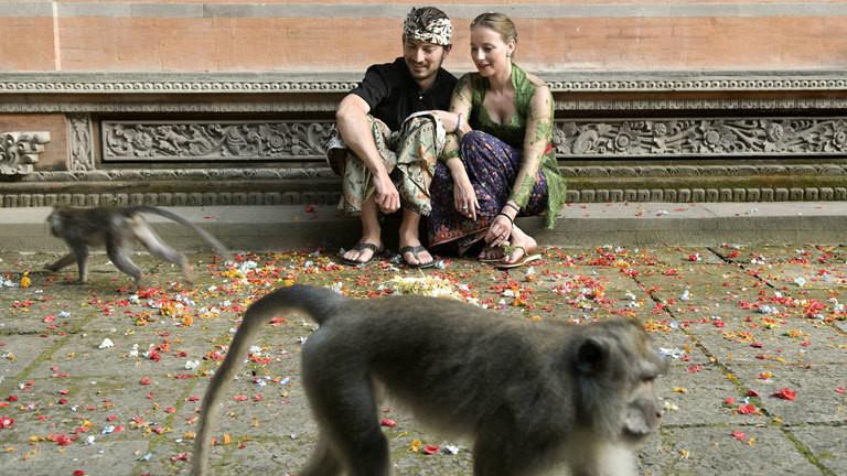 Touristen und Javaneraffen auf Bali.