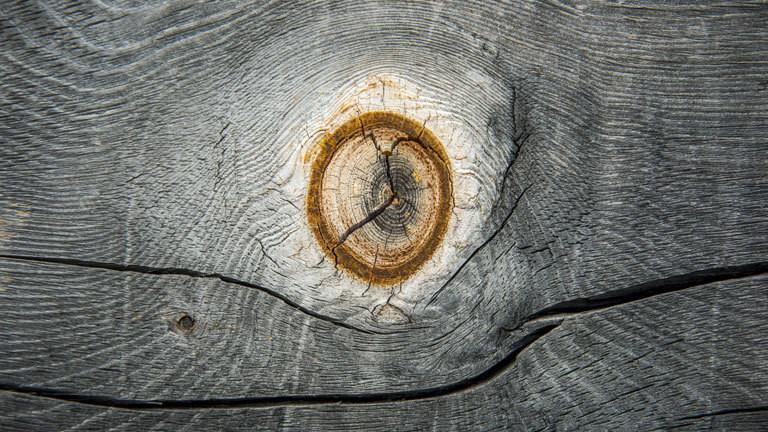Ein verwittertes Stück Holz mit einem Astloch.