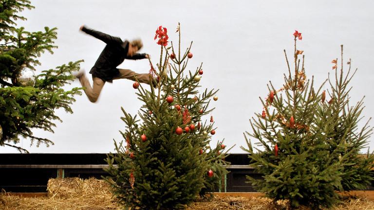 Weihnachtsbaum auf einem Boot