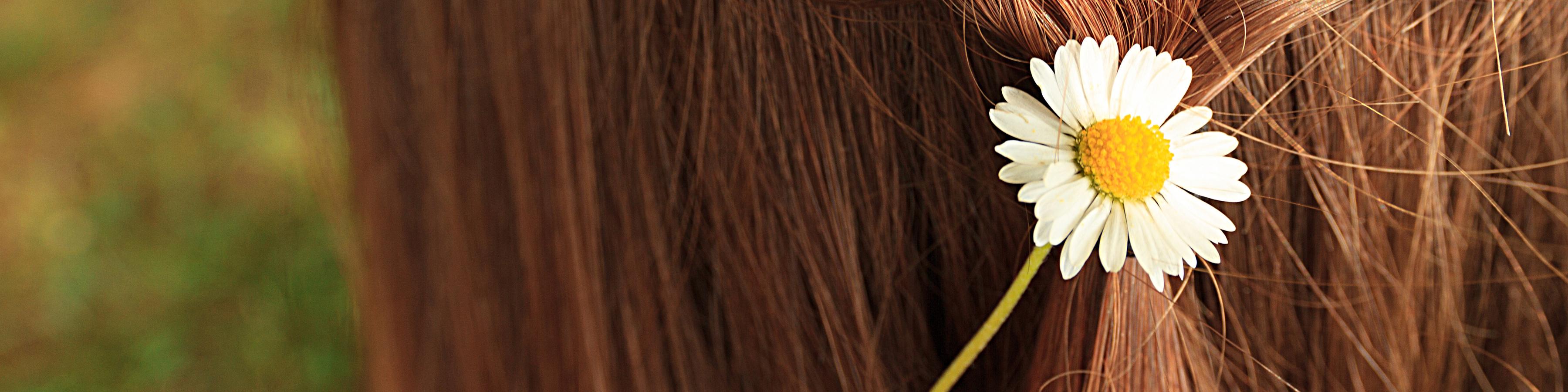 Eine Gänseblümchen in den Haaren einer Frau