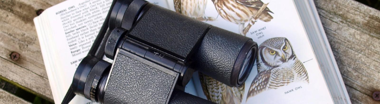 Fernglas auf einem Vogelbestimmungsbuch.