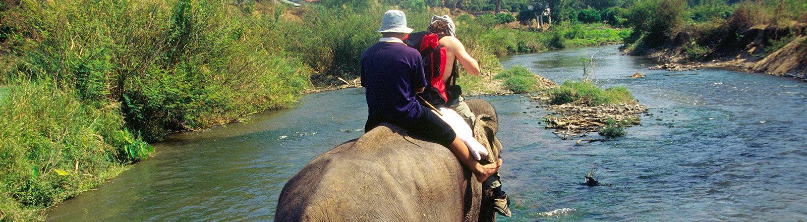 Menschen reiten auf einem Elefant