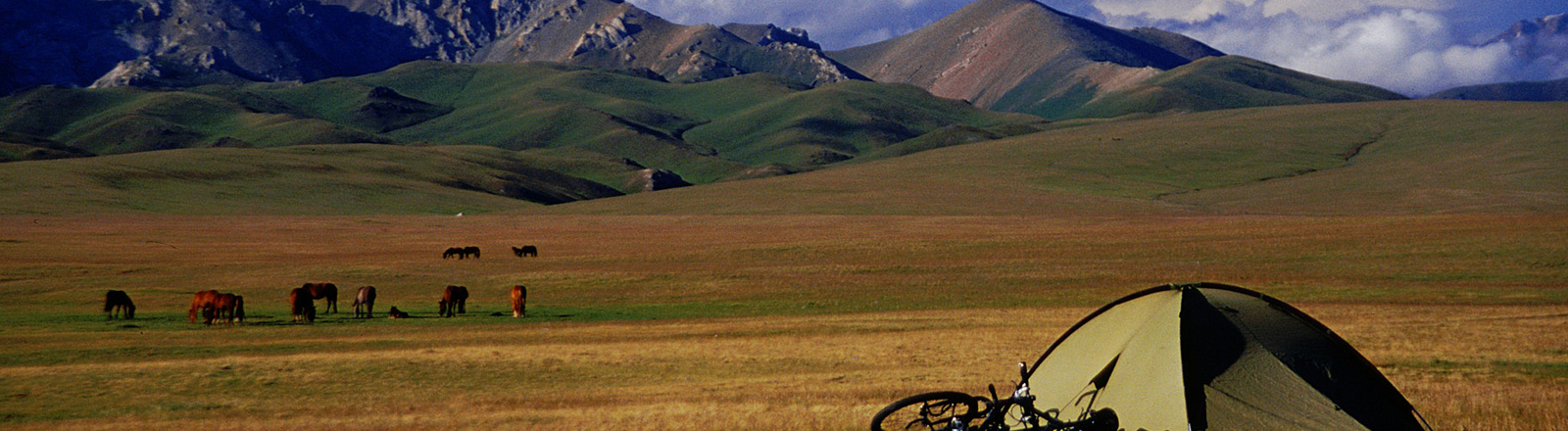 Fahrrad und Zelt in der Steppe