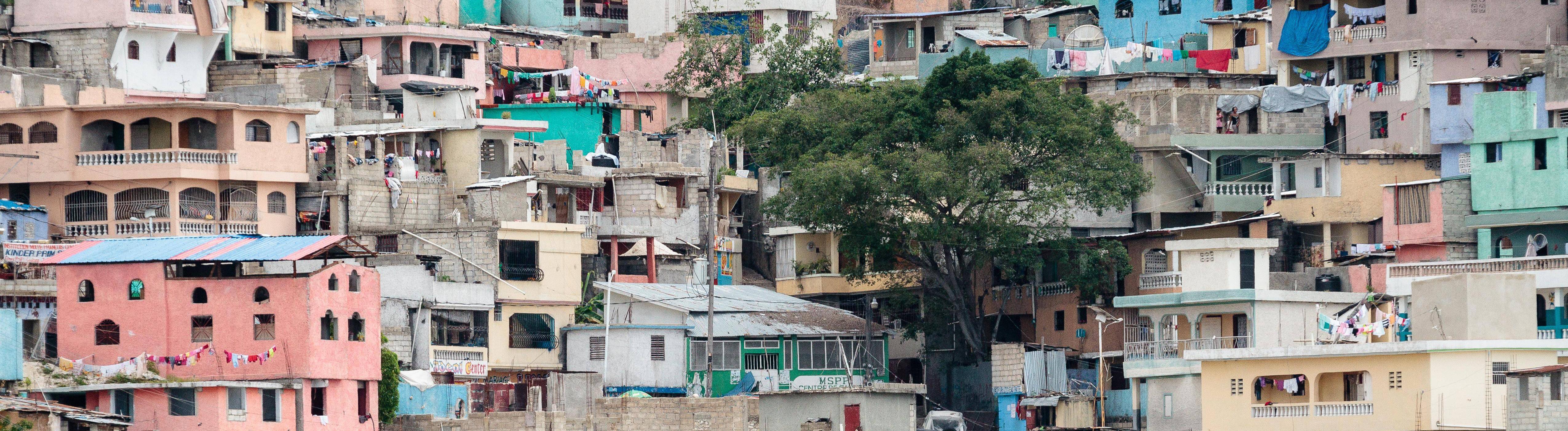 Bunte Häuser, Baum, Armenviertel Jalousie, Pétionville, Port-au-Prince,