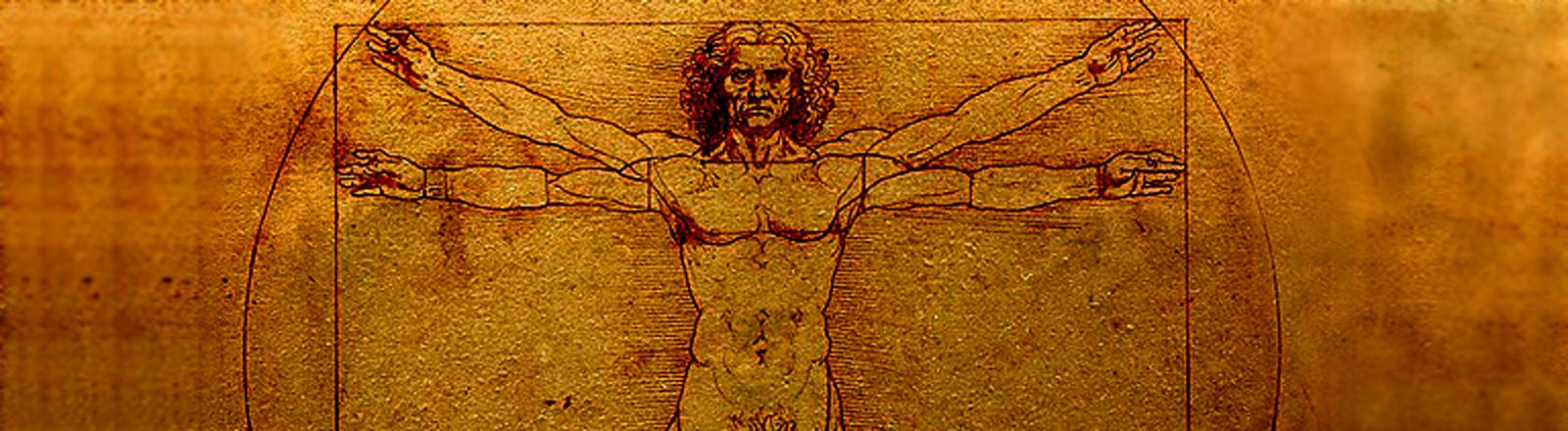 Leonardo da Vinci zeichnete 1490 den vitruvianischen Menschen - mit idealisierten Proportionen nach den Vorstellungen des Architekten Vitruv.