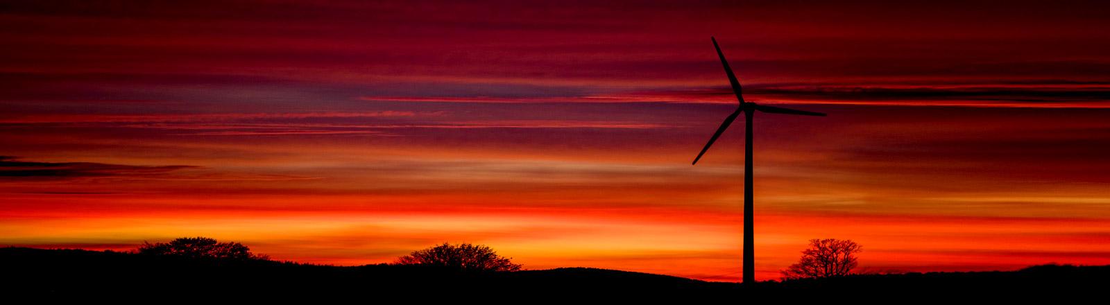 Windrad in der Abendsonne