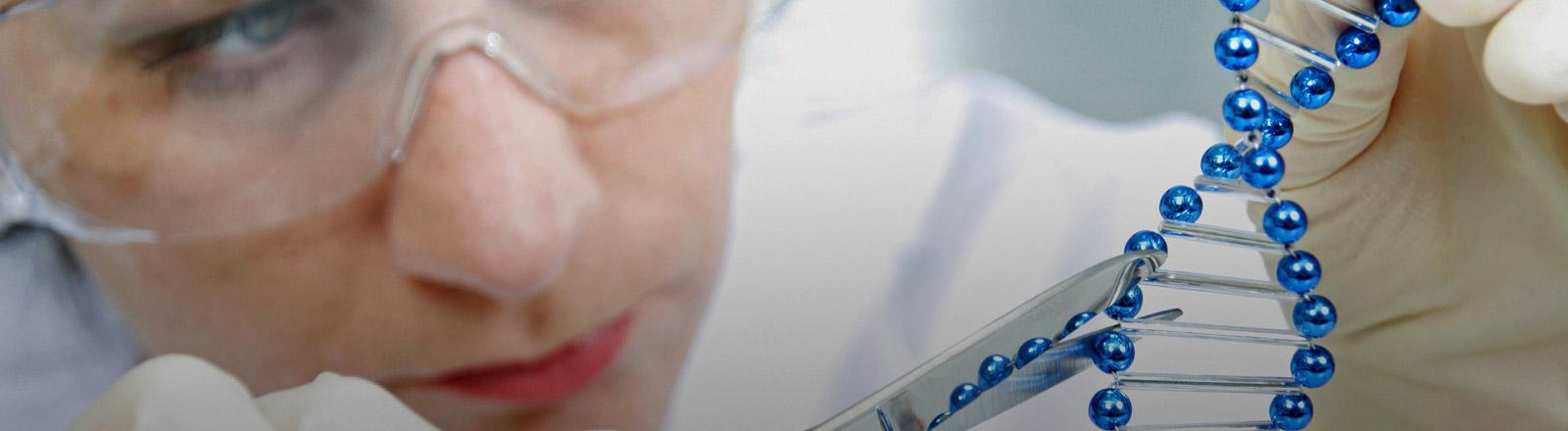 Eine Wissenschaftlerin zerschneidet mit einer Schere ein DNA-Modell