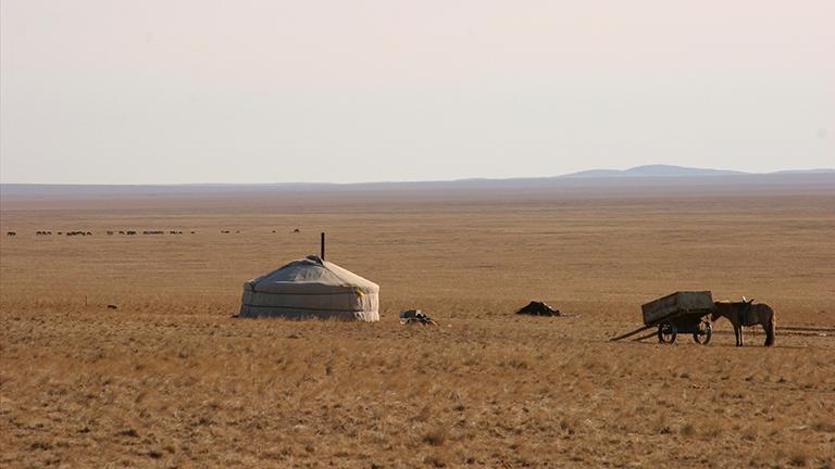 Nomadenjurte in der mongolischen Steppe