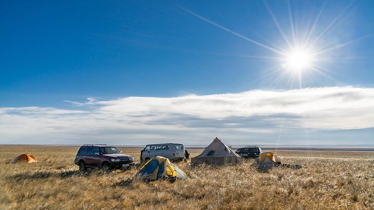 Wissenschaftler-Camp in der mongolischen Steppe
