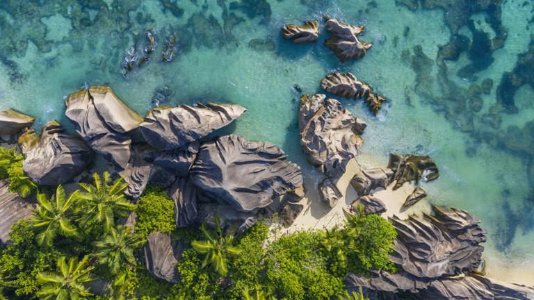 Tropische Küste mit Palmen.