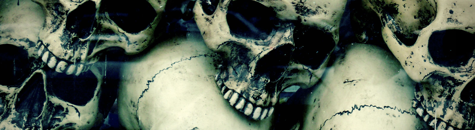 Mehrere alte Schädel