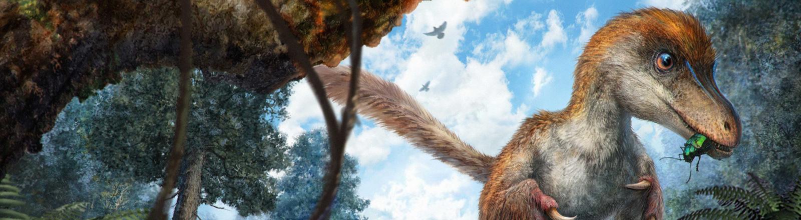 Eine Zeichnung eines kleinen Coelurosaurus im Wald.