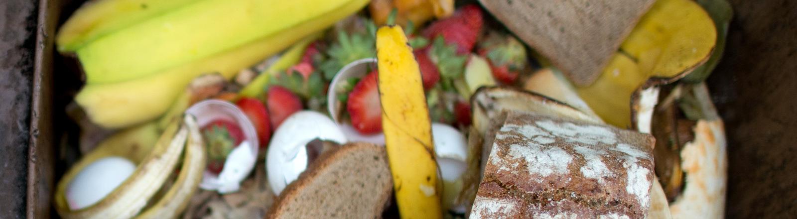 Weggeworfene Lebensmittel in Mülltonne.