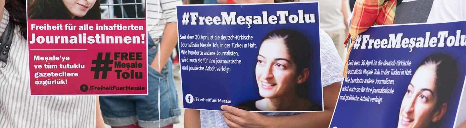 Transparente Free Mesale Tolu