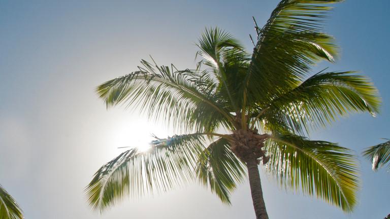Warum der Himmel in den Tropen anders aussieht