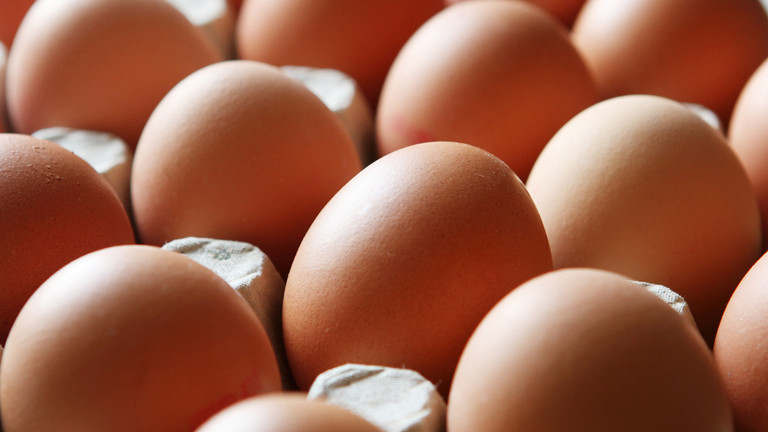 Regierung vernichtet rund zehn Millionen Eier