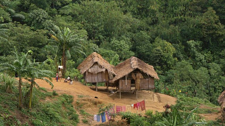 Mysteriöses Sterben im Batek-Stamm