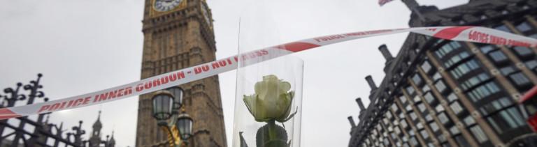 Eine Blume in Sichtweite des britischen Parlaments soll an die Opfer des Terroranschlags erinnern
