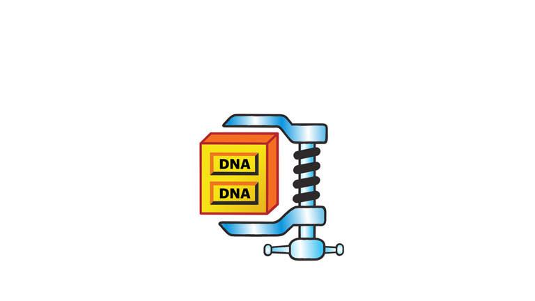 Auch DNA lässt sich komprimieren - ähnlich wie das Zippen einer Datei