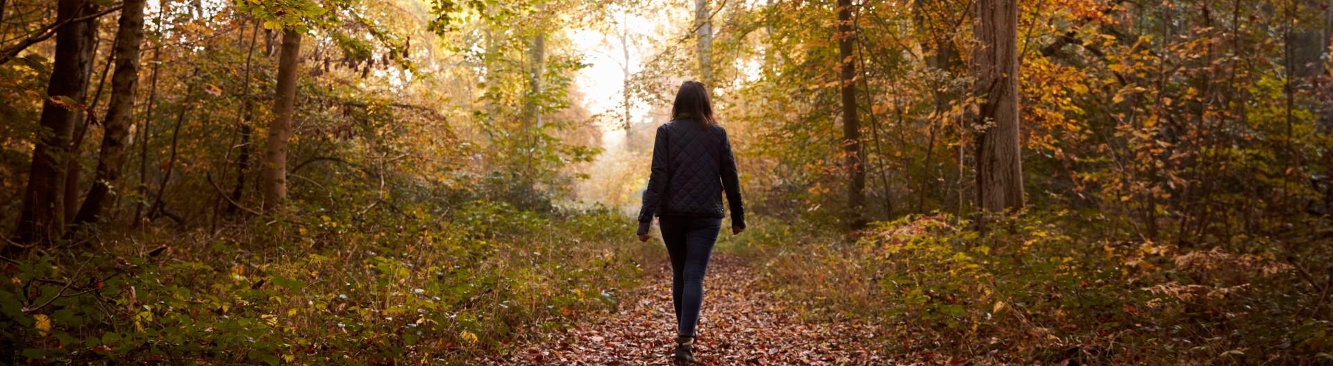 Eine Frau geht im herbstlichen Wald spazieren.