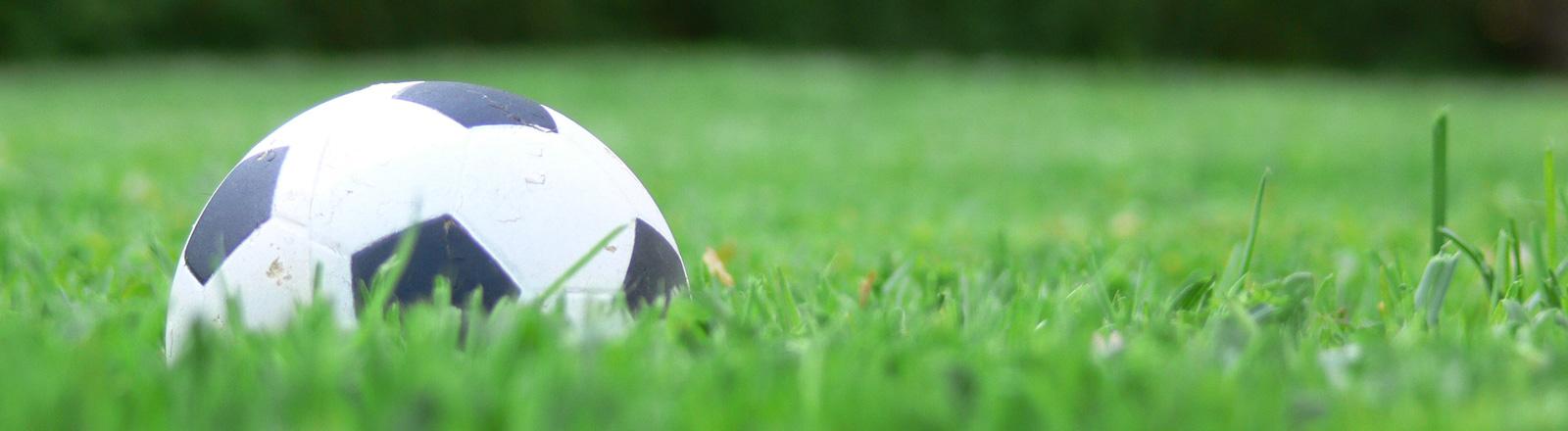Ein Fußball auf dem Rasen.