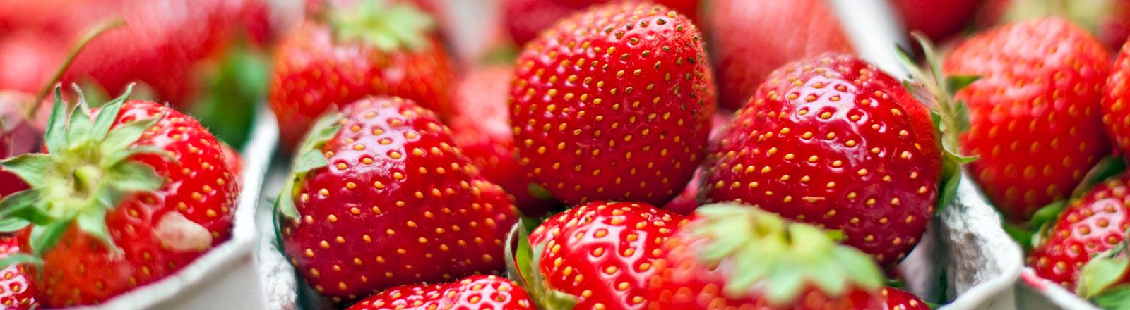 Erdbeeren in Pappschälchen