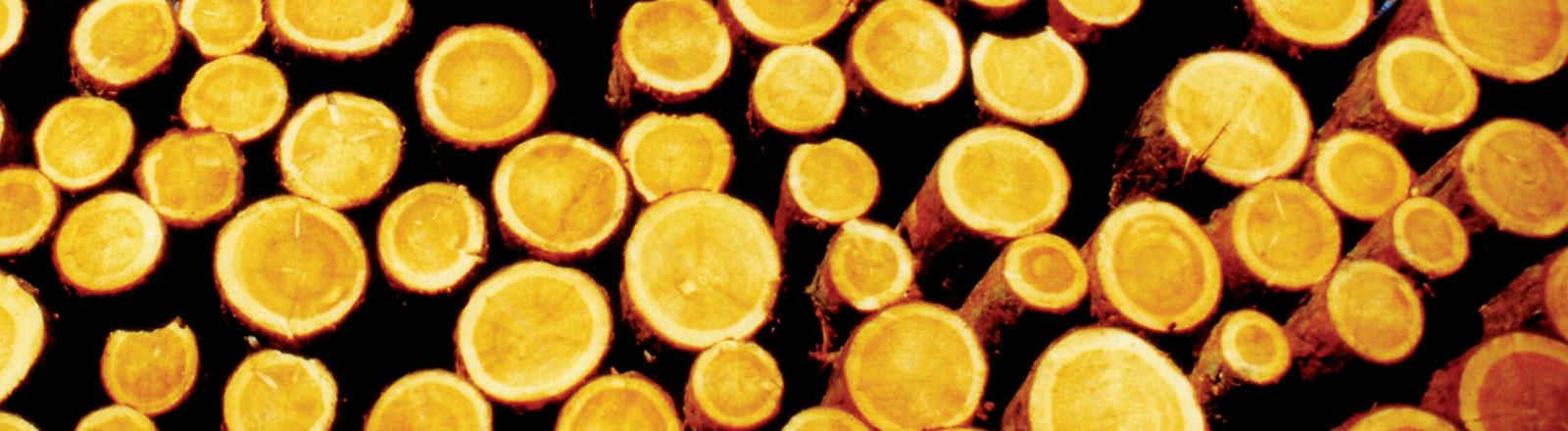 Übereinander geschichtete Baumstämme