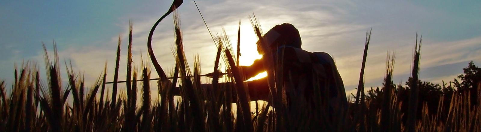 Ein Mann pirscht sich durch ein Getreidefeld mit Pfeil und Bogen in der Hand.