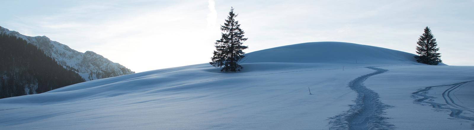 Verschneite Winterlandschaft in den Bergen.