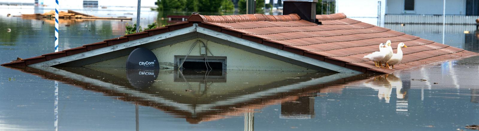 Nur doch das Dach von einem Wohnhaus ragt am 06.06.2013 im Deggendorfer Ortsteil Fischerdorf (Bayern) aus dem Hochwasser der Donau.
