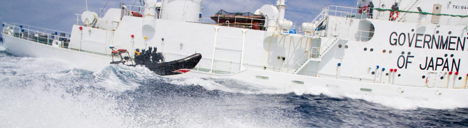 Kleines Boot von Sea Shepherd neben großem Boot der japanischen Küstenwache.