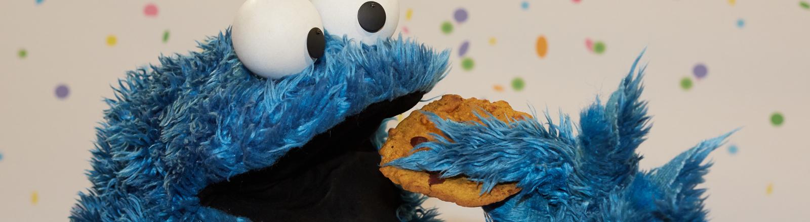 DPA: Das Krümelmonster aus der Sesamstraße isst einen Keks