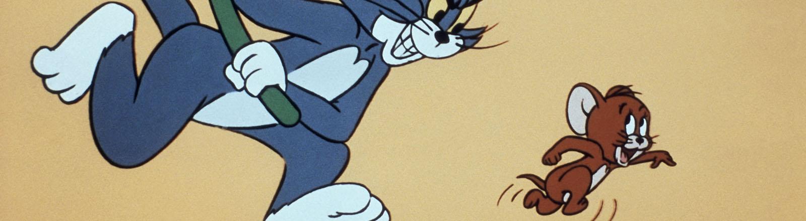 Kater Tom jagt Jerry mit einem Besen.