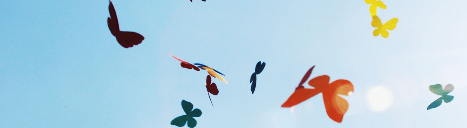 Schmetterlinge vor blauem Himmel
