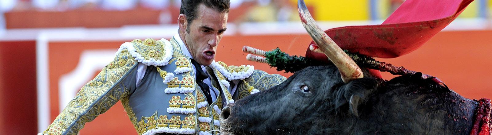 Ein Torero und ein Stier im Kampf in einer Arena.