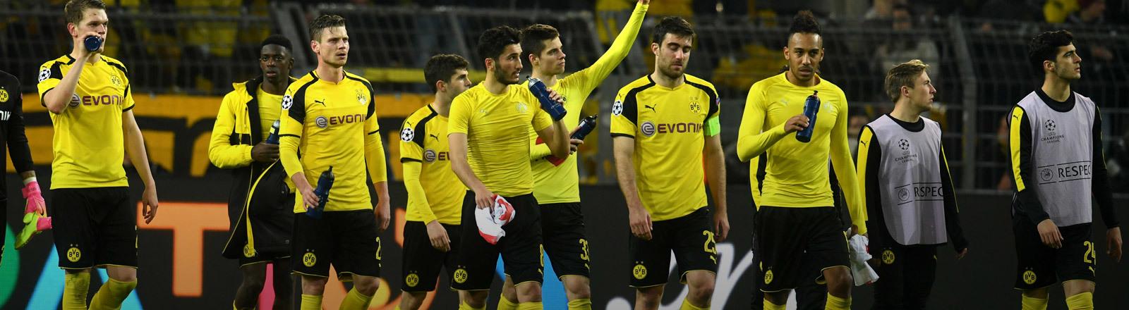 Die Mannschft von Borussia Dortmund