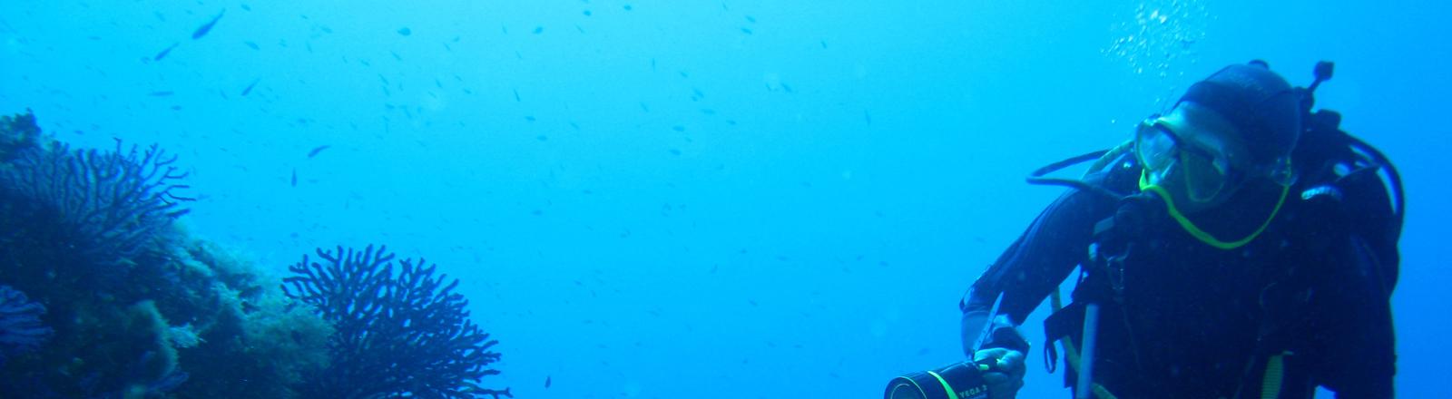 Taucher an einem Korallenriff im Mittelmeer