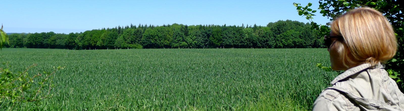 Anne Bente Isenberg blickt auf ein großes grünes Feld