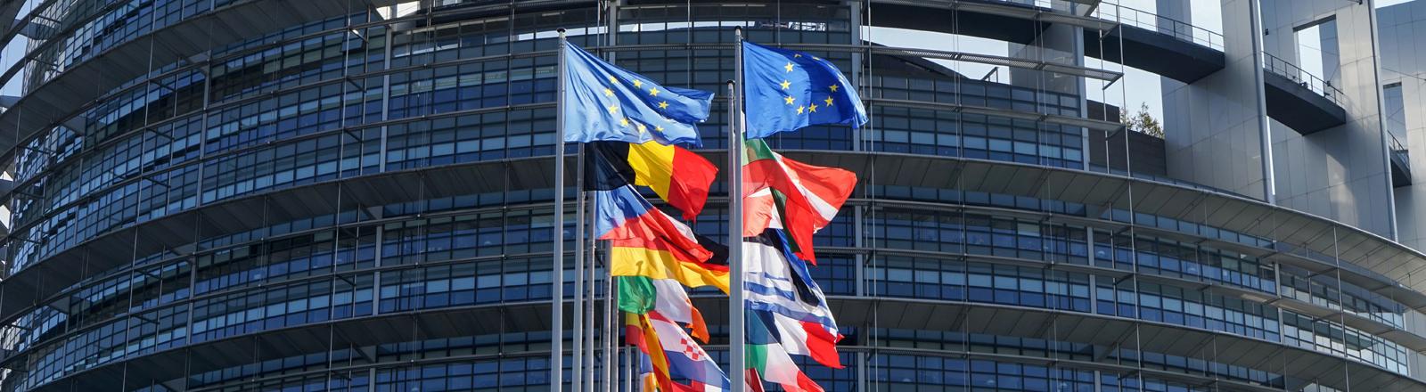 Flaggen der europäischen Mitgliedsstaaten vor dem EU-Parlament in Strassburg