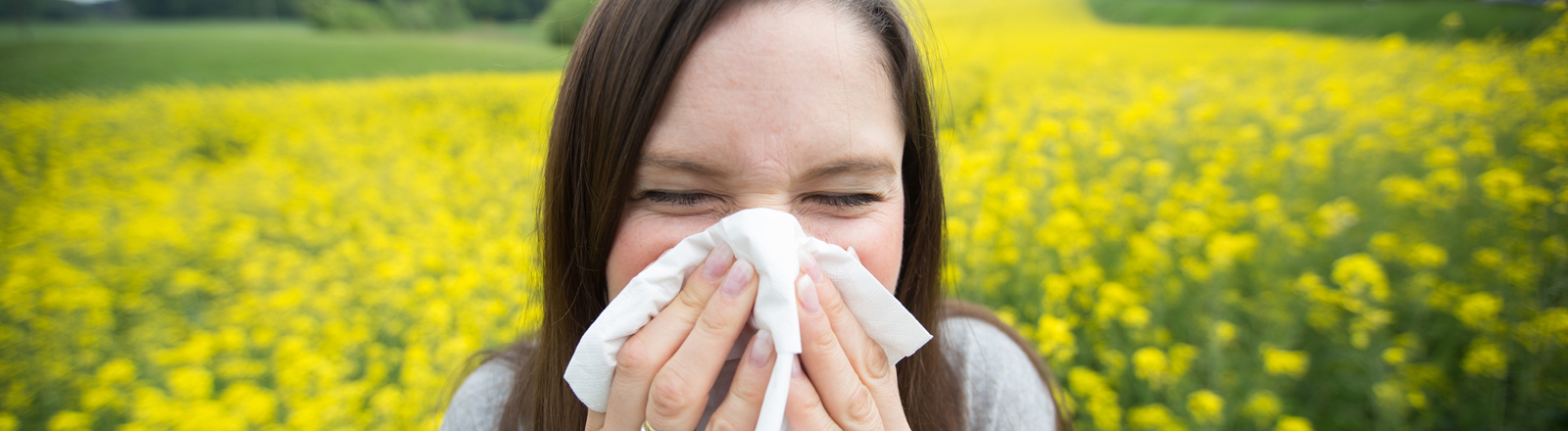 pollen informationsnetzwerk