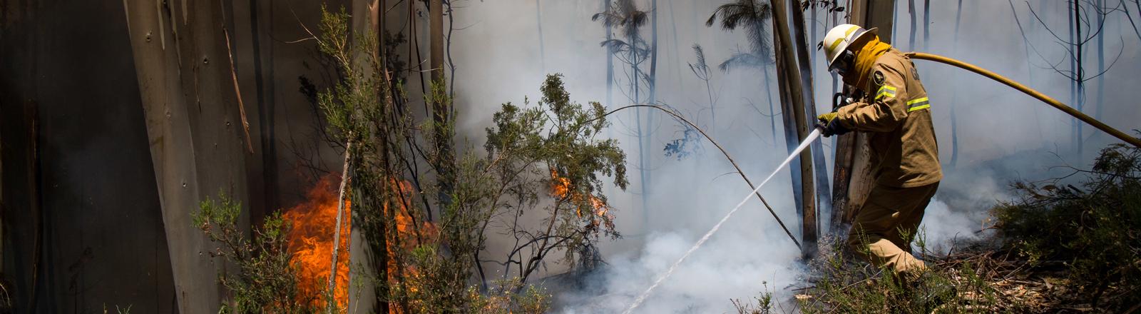 Feuerwehrmann in Portugal löscht einen Waldbrand