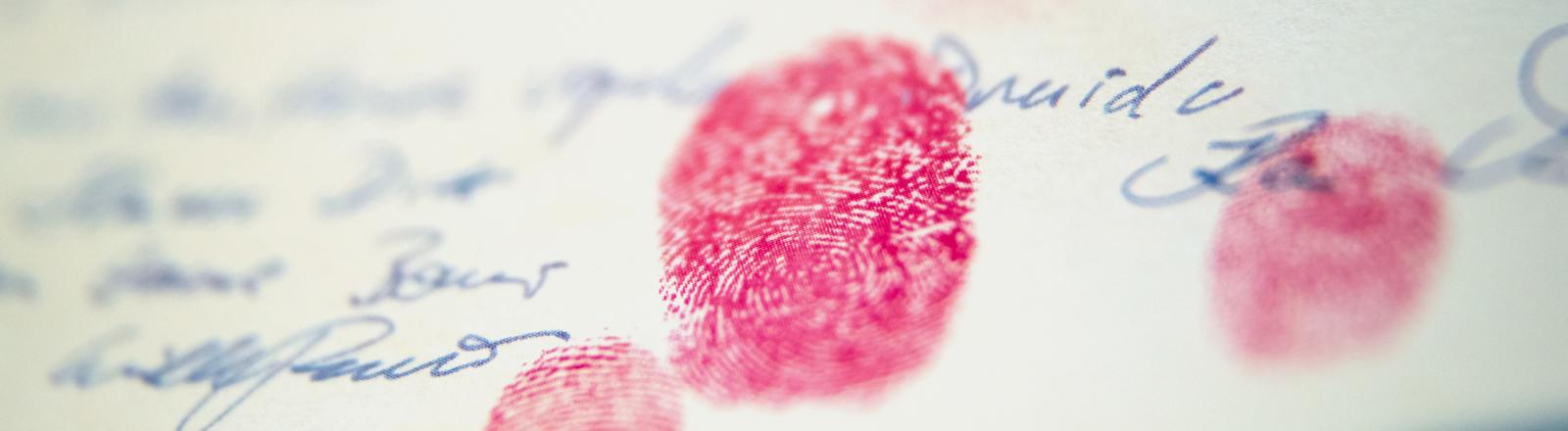 """Ein mit Fingerabdrücken in roter Farbe unterzeichnetes Dokument des Reichsbürgers Wolfgang P., genannt """"Lebenderklärung""""."""