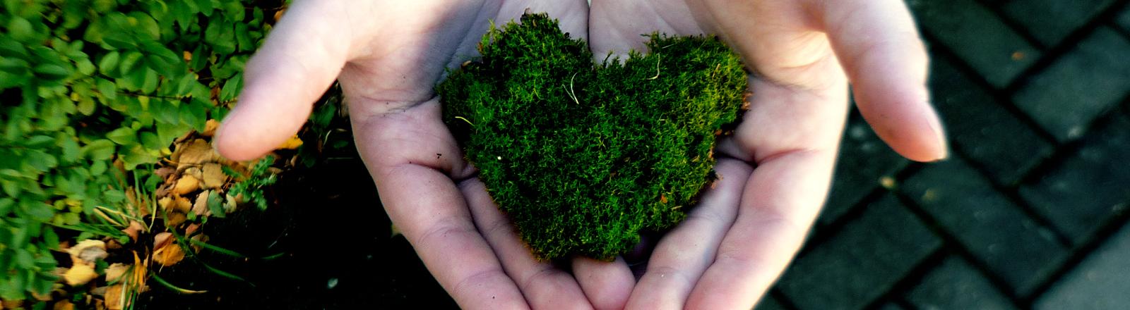 Ein grünes Herz aus Wiese